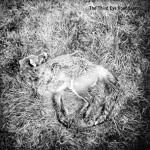 The Third Eye Foundation - Semtex (reissue 2015) IDA111LP_front-cover