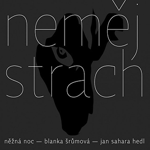 Jan Hedl Jan Sahara Hedl & Precedens - Co Nám Zbejvá