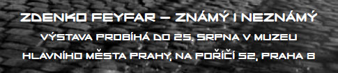 zdenko_feyfar3